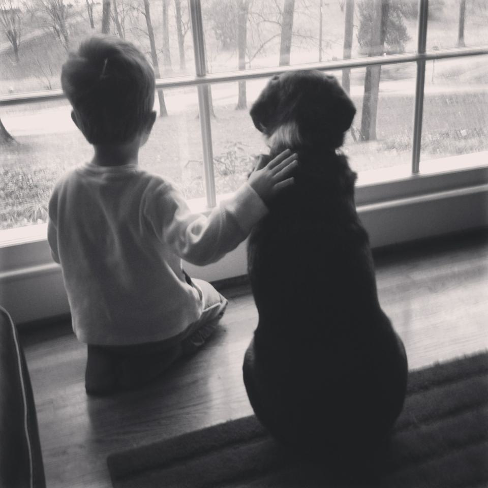 Boy and dog looking out window, with boy's hand on dog